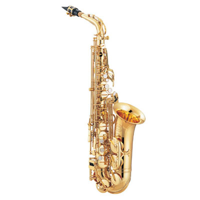 Beginner Alto Sax Package.