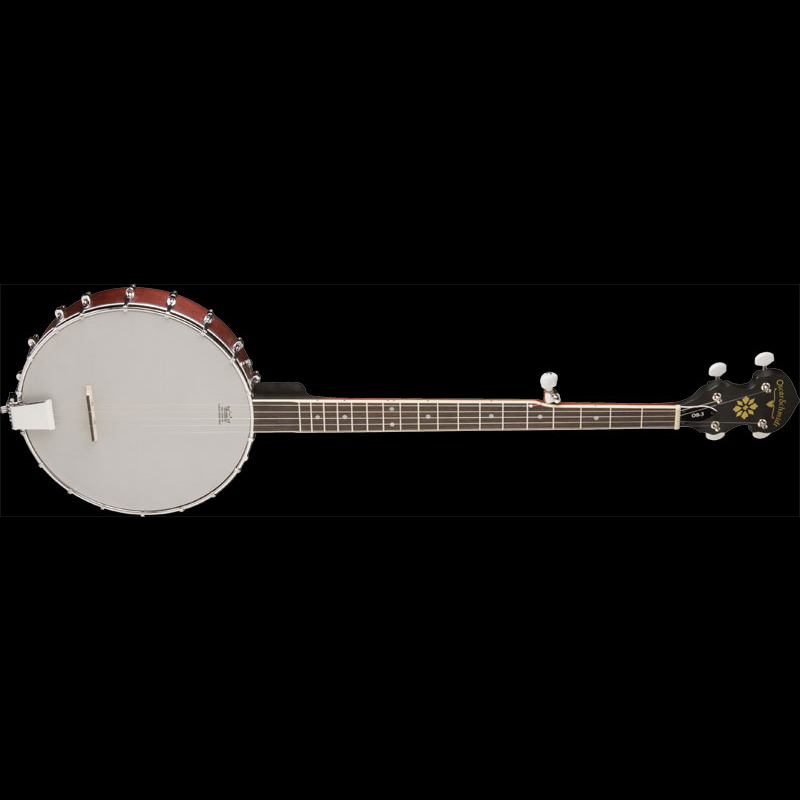 5-String Open Back Banjo.