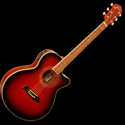 Acoustic/Electric Cutaway Concert Style Guitar with Tuner.