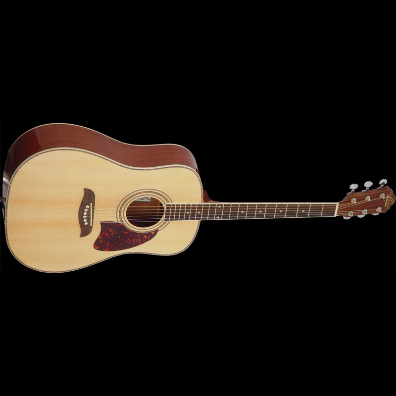 Intermediate Acoustic Dreadnought Guitar.