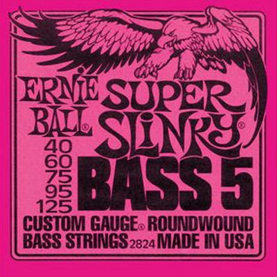 Ernie Ball 5-String Bass Strings.