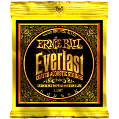 Ernie Ball Everlast Coated 80/20 Acoustic Strings.