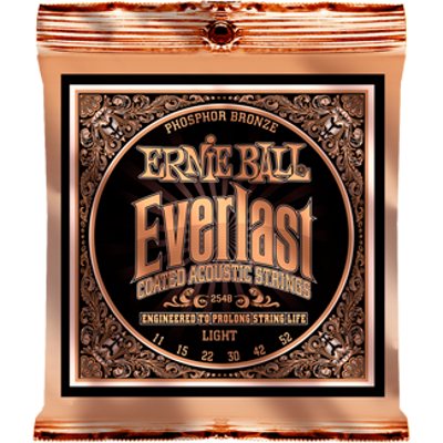 Ernie Ball Everlast Coated Phosphor Bronze Acoustic Strings.
